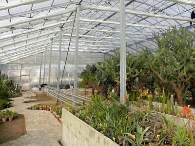 Оранжерия в Ботаническата градина в Балчик
